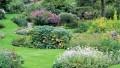 Bir İngiliz Bahçesi Yaratın