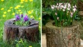 Ağaç Kütüklerinden Bahçe Düzenlemeleri