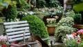 Küçük Bahçeler İçin Beş Şık Öneri