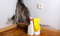 Duvardaki Küf Nasıl Temizlenir