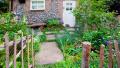 Teras Ve Bahçelerinizi Bitkilerle Renklendirin