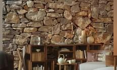 Ev İçi Duvar Taşları Modelleri