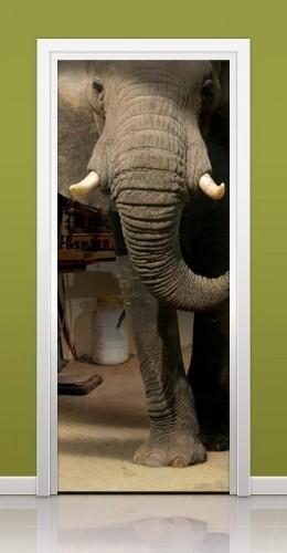 3d-kapı-sticker-fil-görünümü