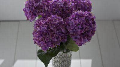 Dekoratif Yapay Çiçek Modelleri