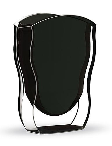 siyah cam vazo