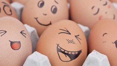 Yumurta Kabuğuyla Neler Yapılır